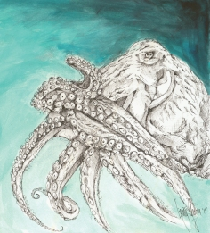 Pacific Giant Octopus